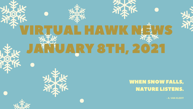 Virtual Hawk News