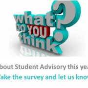 Advisory Survey