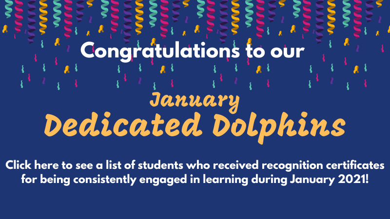 dedicated dolphins January 2021