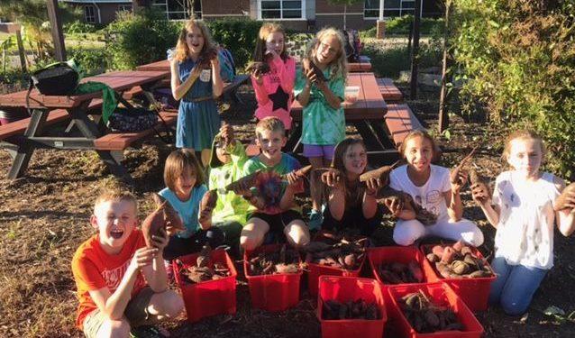 Garden Club harvest