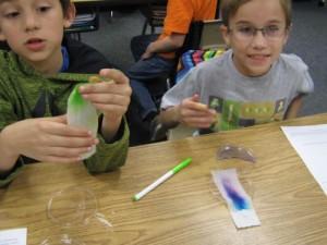Tie Dye experiment Mrs. Saunders 001