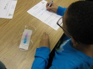 Tie Dye experiment Mrs. Saunders 004