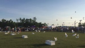relay for life (5)