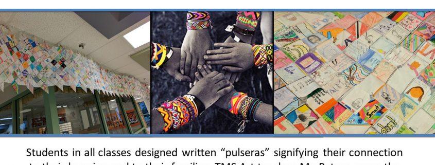 Pulsera Project
