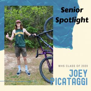 Senior Spotlight Joey Picataggi