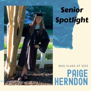 Senior Spotlight Paige Herndon